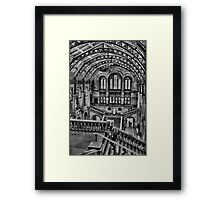 Natural History Museum B/W HDR  Framed Print