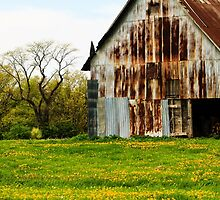 Old Barn in Illinois by bengraham