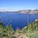 Crater Lake Blossom by baglesscat