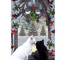 Mistletoe Magic Photographic Print