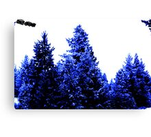 Blue Winter Canvas Print