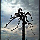 Ridge Road Tree 2 by Loewin