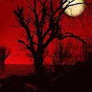 Red Moon Night by Sherryll  Johnson