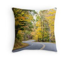 Upstate NY Country Road Throw Pillow