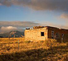 Beautiful Abandonment by Kim Barton