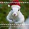 """Wishing You A Merry Christmas"""