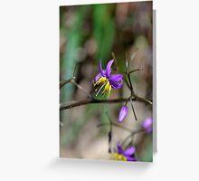 Precious Purple Greeting Card