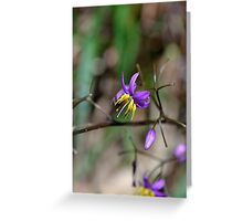Precious Purple Greeting Card
