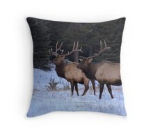 Bull Elk - Lake Minnewanka Throw Pillow