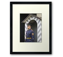Castle Guard, Prague, Czech Republic Framed Print