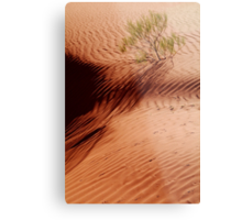 I will Survive!...Simpson Desert Metal Print