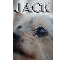 JACK © Vicki Ferrari Photography Photographic Print