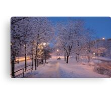 Winter In Suburbia I Canvas Print
