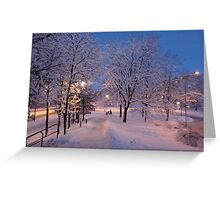 Winter In Suburbia I Greeting Card