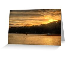 Gold - Bayview,Sydney - The HDR Experience Greeting Card