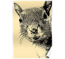 Squirrel Lithograph Poster