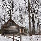 Hesler Log House by Pietrina Elena Photography