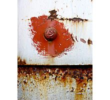 Rust Bloom Photographic Print