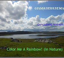 Color Me A Rainbow - Challenge Winner Banner by SunriseRose