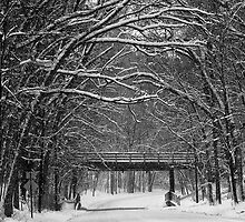 Winter Arches by PixelPerfectPho