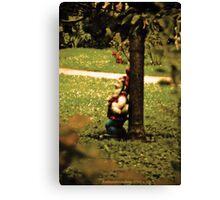 Walkman Dwarf Canvas Print