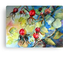 Ruby Red Rose Hips Canvas Print