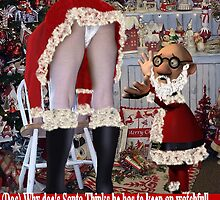 Dawn And Docs Xmas by Michael Primm