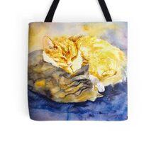 Cozy Kitties Tote Bag