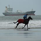 Horse Power by Sally J Hunter