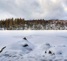 High Dam - The December Freeze by Jamie  Green