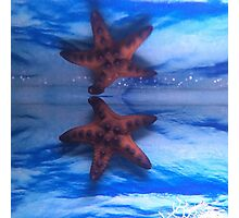 Star Life Photographic Print