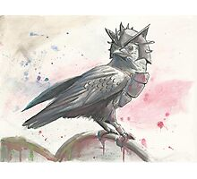 Crow King Photographic Print