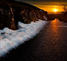 Golden road to the sunset by Shaun Whiteman