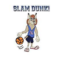 Slam Dunk! Photographic Print