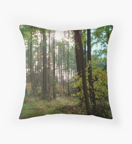 Forest in the Winter sun Throw Pillow