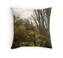 Forest in the Winter sun 2 Throw Pillow