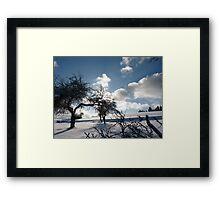 wild white landscape Framed Print