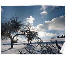 wild white landscape Poster