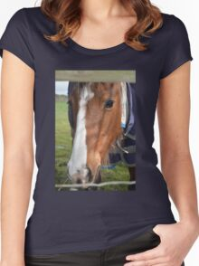 LOOKING THROUGH THE FENCE Women's Fitted Scoop T-Shirt