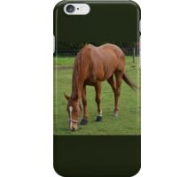 THE ANSWER MY FRIEND IS BLOWIN' IN THE WIND. iPhone Case/Skin