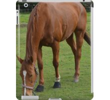 THE ANSWER MY FRIEND IS BLOWIN' IN THE WIND. iPad Case/Skin