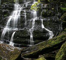 Nelson Falls, Tasmania, Australia by Michael Boniwell