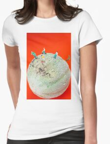 Dirty Cleaning On Sweet Melon Womens Fitted T-Shirt