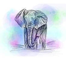 Elephant watercolour sketch Photographic Print