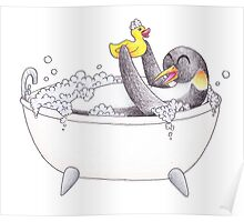 Penguin Bubble Bath Poster