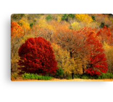 Mother Nature's Painting Her Landscapes,  Again! Canvas Print
