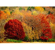 Mother Nature's Painting Her Landscapes,  Again! Photographic Print