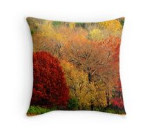 Mother Nature's Painting Her Landscapes,  Again! Throw Pillow