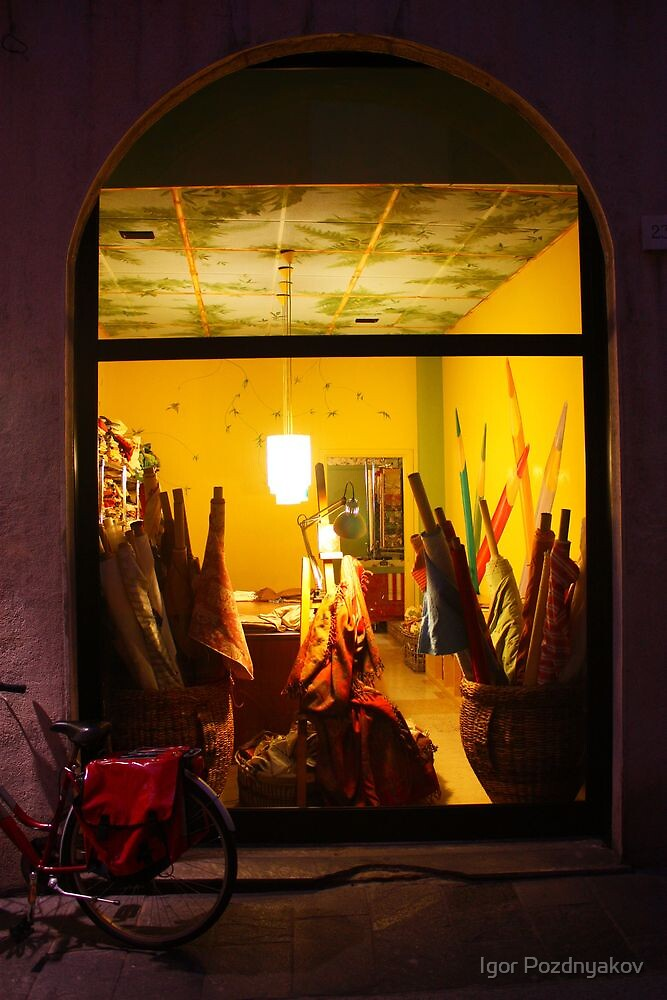 Fabrics Store Window II. Pavia, Italy 2010 by Igor Pozdnyakov