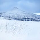 The Big Sugarloaf under snow by Ramona Farrelly